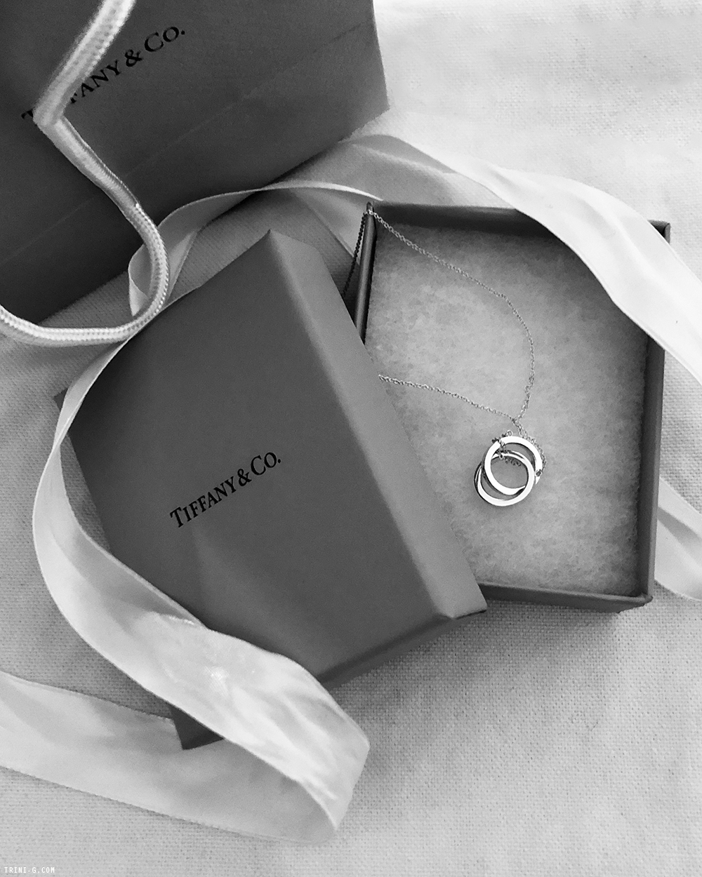 Trini | Tiffany & Co 1837 Circle Pendant