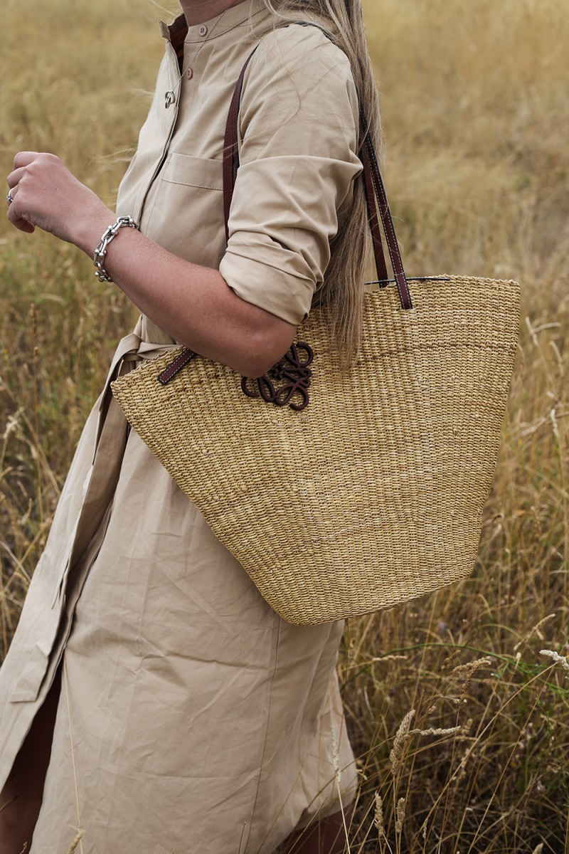 Trini  Skye dress Loewe bag